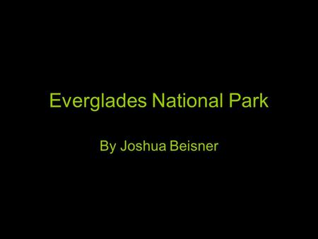 Everglades National Park By Joshua Beisner. Location Region - Southeast State Florida Capital Tallahassee Longitude 80.7°N Latitude 26.0°W.