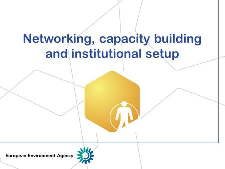 Networking, capacity building and institutional setup.