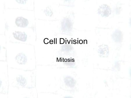 Cell Division Mitosis. Produces 2 cells – called daughter cells – from one parent cell Daughter cells are identical to each another and to the original.