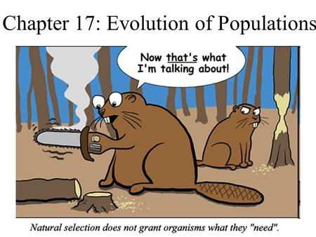 Chapter 17: Evolution of Populations