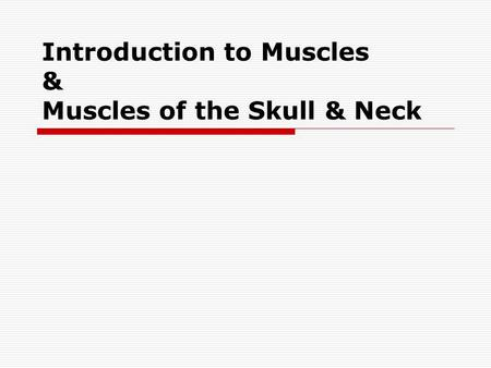 Introduction to Muscles & Muscles of the Skull & Neck.