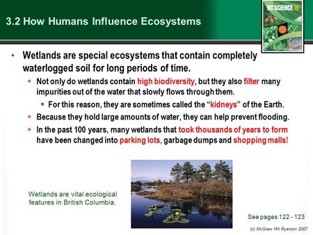 (c) McGraw Hill Ryerson 2007 3.2 How Humans Influence Ecosystems Wetlands are special ecosystems that contain completely waterlogged soil for long periods.