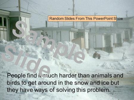 People find it much harder than animals and birds to get around in the snow and ice but they have ways of solving this problem. Sample Slide Random Slides.