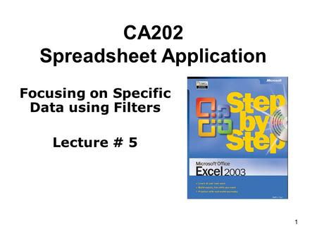 1 CA202 Spreadsheet Application Focusing on Specific Data using Filters Lecture # 5.