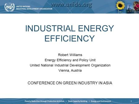 1 INDUSTRIAL ENERGY EFFICIENCY CONFERENCE ON GREEN INDUSTRY IN ASIA Robert Williams Energy Efficiency and Policy Unit United National Industrial Development.