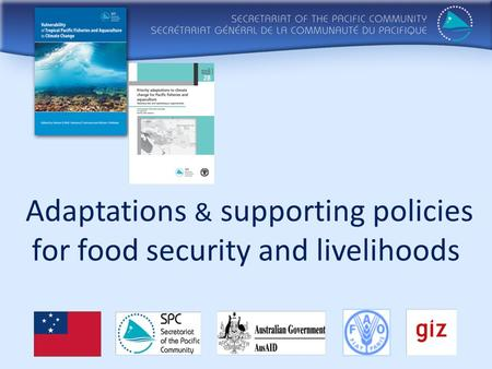 Adaptations & supporting policies for food security and livelihoods.