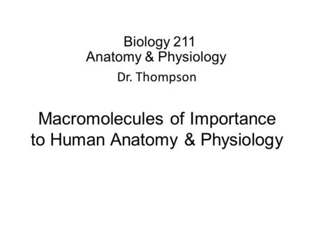 Biology 211 Anatomy & Physiology I Dr. Thompson Macromolecules of Importance to Human Anatomy & Physiology.