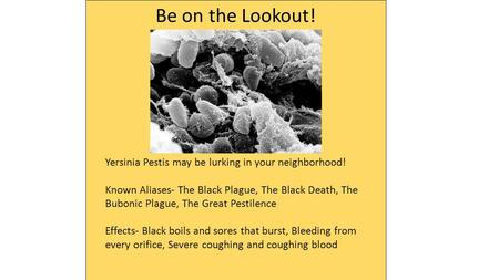 Be on the Lookout! Yersinia Pestis may be lurking in your neighborhood! Known Aliases- The Black Plague, The Black Death, The Bubonic Plague, The Great.
