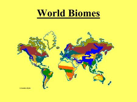 World Biomes. <strong>Tropical</strong> Rainforest Location: Found near equator… Abiotic Factors: little variation in.
