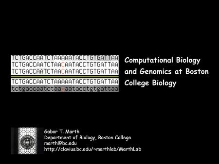 Computational Biology and Genomics at Boston College Biology Gabor T. Marth Department of Biology, Boston College