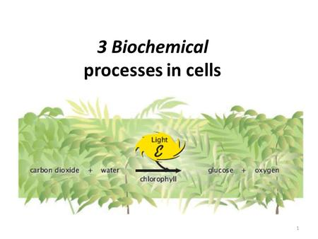 3 Biochemical processes in cells 1. Organic ___________ provide a source of energy for living organisms. Chemical ____________ may release energy or require.