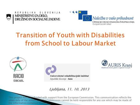 Transition of Youth with Disabilities from School to Labour Market Ljubljana, 11. 10. 2013 This project has been funded with support from the European.