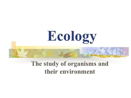 Ecology The study of organisms and their environment.