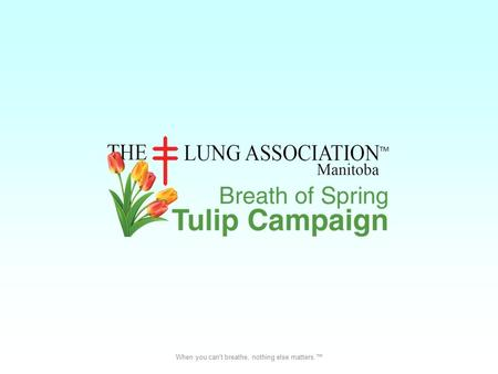 When you can't breathe, nothing else matters.™. What is the Tulip Campaign? The Breath of Spring Tulip Campaign is a fundraiser for The Manitoba Lung.