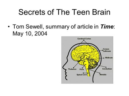 Secrets of The Teen Brain Tom Sewell, summary of article in Time: May 10, 2004.