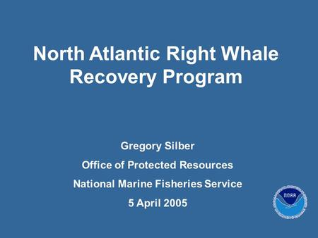 North Atlantic Right Whale Recovery Program Gregory Silber Office of Protected Resources National Marine Fisheries Service 5 April 2005.