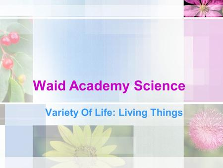 Waid Academy Science Variety Of Life: Living Things.