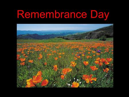 Remembrance Day. On the eleventh hour of the eleventh day, of the Eleventh month…. ….we shall remember them.