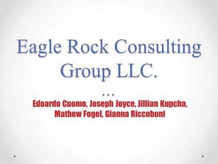 Eagle Rock Consulting Group LLC. Edoardo Cuomo, Joseph Joyce, Jillian Kupcha, Mathew Fogel, Gianna Riccoboni.