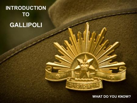 INTRODUCTION TO GALLIPOLI WHAT DO YOU KNOW?. WRITE THE ANSWERS TO THE QUESTIONS in the parts of the poppy you have drawn. YOU ARE TO WORK IN GROUPS OF.