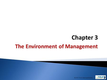 Chapter 3 The Environment of Management © 2015 YOLO Learning Solutions.