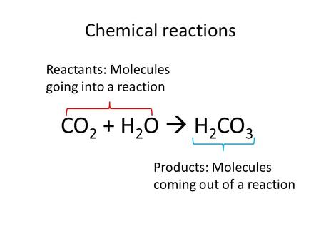 Chemical reactions CO 2 + H 2 O  H 2 CO 3 Reactants: Molecules going into a reaction Products: Molecules coming out of a reaction.