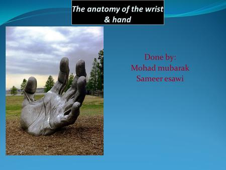 The anatomy of the wrist & hand Done by: Mohad mubarak Sameer esawi.