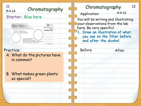 1211 9-4-14 Chromatography Starter: Glue here Practice: A.What do the pictures have in common? B.What makes green plants so special? Chromatography Application.