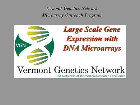 Vermont Genetics Network Microarray Outreach Program Large Scale Gene Expression with DNA Microarrays.