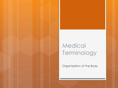 Medical Terminology Organization of the Body. Organization of the Body Objectives:  To name the body systems and their functions  To identify body cavities.