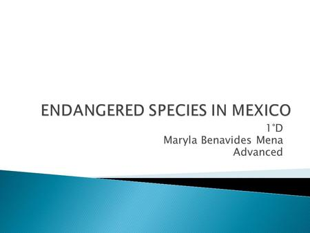 1°D Maryla Benavides Mena Advanced.  Mexico, an exotic country, has a large number of different regions. It is inhabited by several different species.