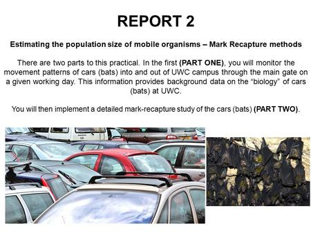 REPORT 2 Estimating the population size of mobile organisms – Mark Recapture methods There are two parts to this practical. In the first (PART ONE), you.