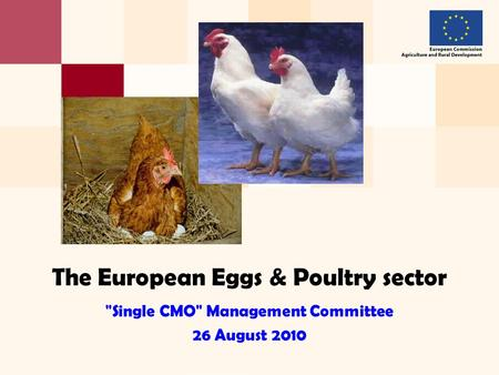 The European Eggs & Poultry sector Single CMO Management Committee 26 August 2010.