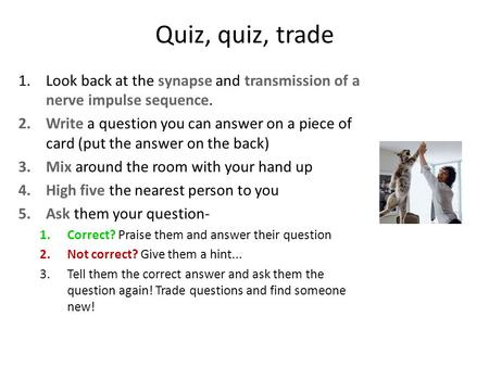 Quiz, quiz, trade 1.Look back at the synapse and transmission of a nerve impulse sequence. 2.Write a question you can answer on a piece of card (put the.