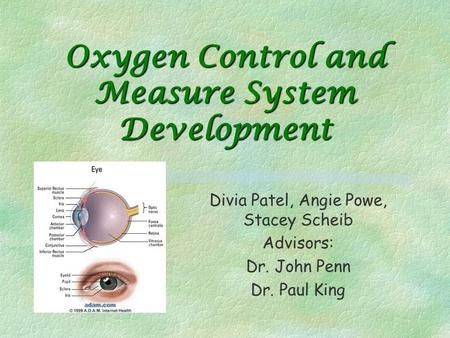 Oxygen Control and Measure System Development Divia Patel, Angie Powe, Stacey Scheib Advisors: Dr. John Penn Dr. Paul King.