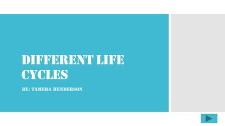 Different Life Cycles By: Tamera Henderson.  Content Area: Science  Grade Level: 1st  Summary: The purpose of this instructional PowerPoint is to have.