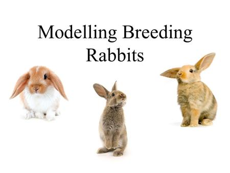 "Modelling Breeding Rabbits. ""Breeding like Rabbits!"" Suppose we have the following model for the breeding of rabbits: We start off with two rabbits in."