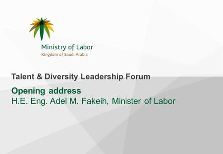 Opening address H.E. Eng. Adel M. Fakeih, Minister of Labor Talent & Diversity Leadership Forum.