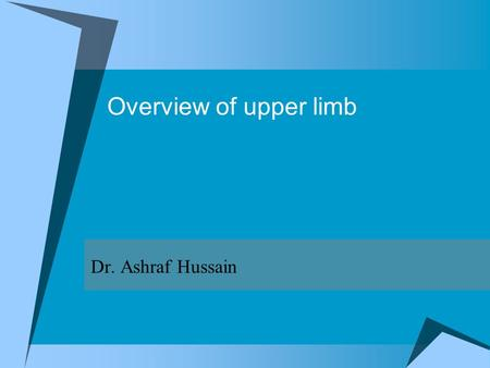 Overview of upper limb Dr. Ashraf Hussain. Upper limb  Associated with lateral aspect of the lower portion of neck and thoracic wall  Suspended from.