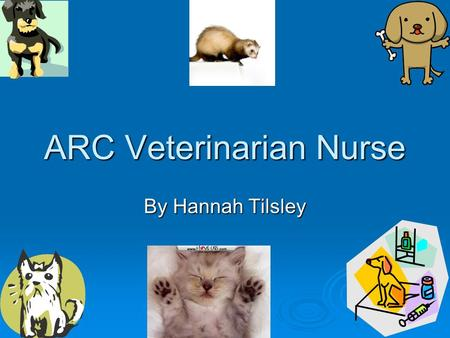 ARC Veterinarian Nurse By Hannah Tilsley. Introduction An Animal recovery Centre (ARC) Veterinarian Nurse, look after sick animals that need attention.