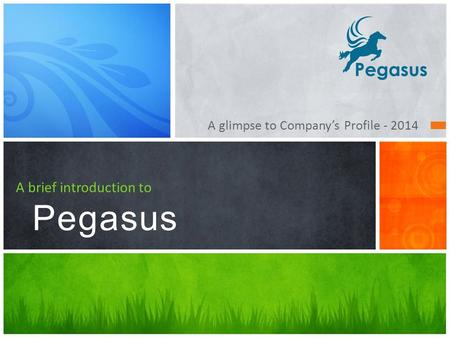 A brief introduction to Pegasus A glimpse to Company's Profile - 2014.