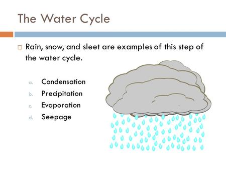 The Water Cycle  Rain, snow, and sleet are examples of this step of the water cycle. a. Condensation b. Precipitation c. Evaporation d. Seepage.