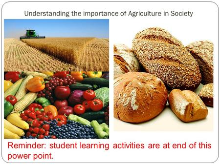 Understanding the importance of Agriculture in Society Reminder: student learning activities are at end of this power point.
