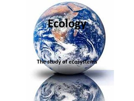 Ecology The study of ecosystems. Environments Almost anywhere/everywhere is an environment to at least some sort of organism. Ie: urban, rainforest, polar,