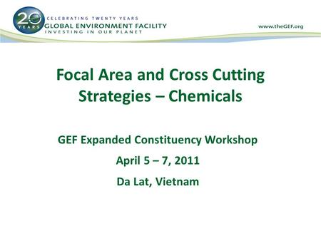 Focal Area and Cross Cutting Strategies – Chemicals GEF Expanded Constituency Workshop April 5 – 7, 2011 Da Lat, Vietnam.