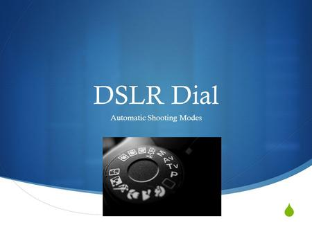  DSLR Dial Automatic Shooting Modes. Canon and Nikon.
