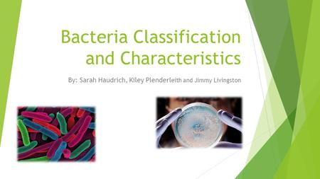 Bacteria Classification and Characteristics By: Sarah Haudrich, Kiley Plenderl eith and Jimmy Livingston.