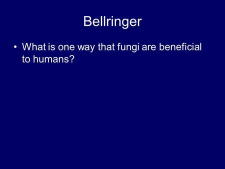 Bellringer What is one way that fungi are beneficial to humans?