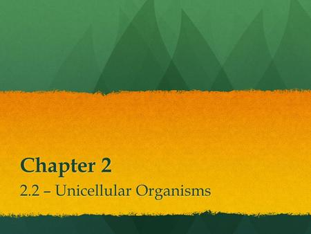 Chapter 2 2.2 – Unicellular Organisms. Unicellular Organisms We are multicellular organisms We are multicellular organisms However, many living things.