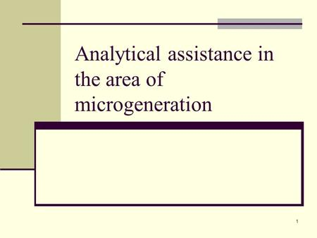 1 Analytical assistance in the area of microgeneration.